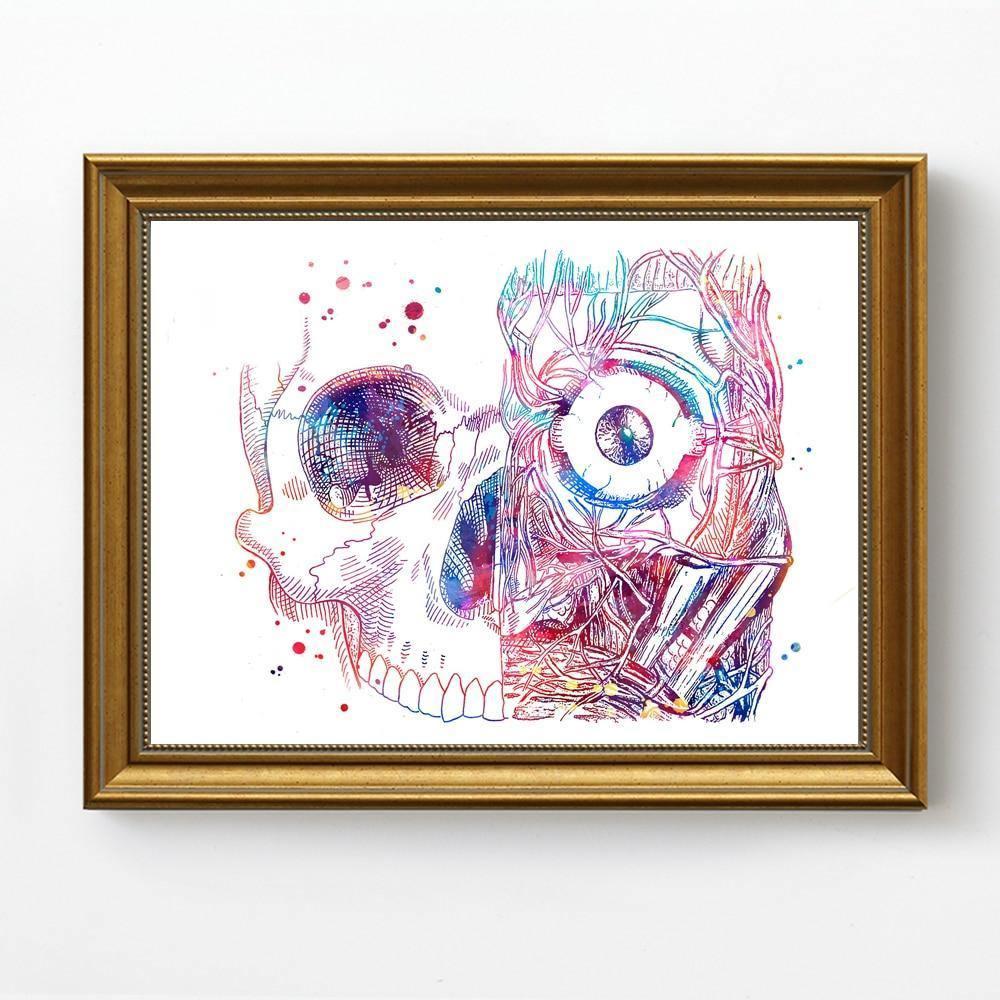 Eye Anatomy - DrunkArtist
