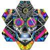 Suger Skull Hexagonal Canvas Set - DrunkArtist